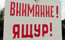 Логотип темы (Ящур: регионализация)
