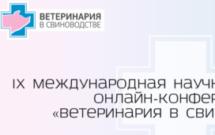 Логотип темы (Конференция – 2020)